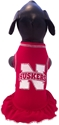 All Star Dogs Cheer Dress All Star Dogs Cheer Dress, Nebraska Cornhuskers, husker football, nebraska merchandise, husker merchandise, nebraska cornhusker merchandise, nebraska cornhuskers pet items, husker pet items, Husker Dog jersey, nebraska dog jersey, nebraska cornhuskers dog jersey