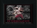 Determination Framed Nebraska Cornhuskers, Determination Framed