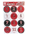 Huskers First Year Monthly Stickers