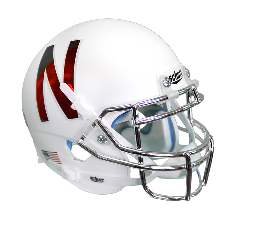 2016 Alternate Mini Helmet