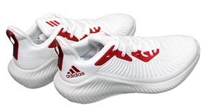 Adidas Official 2019 Nebraska Student Athlete Alpha Bouncers - CALL TO ORDER
